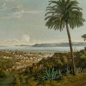 L'antico Orto Botanico di Messina